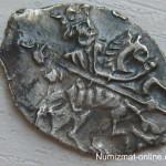 Монеты чешуйки
